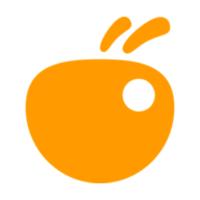 Intelliants - Middle/Senior PHP developer
